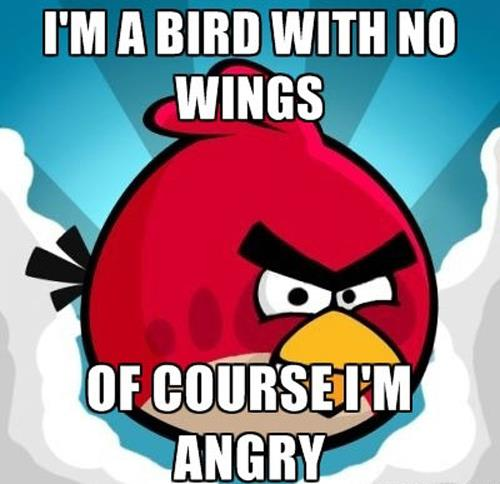 Angry-Birds-are-Angry-Because